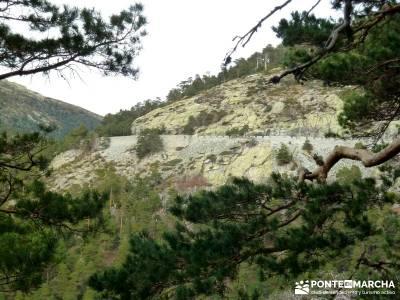 Siete Picos:Senda Herreros,Camino Schmid(Schmidt); excursiones alrededores de madrid;escapadas por m